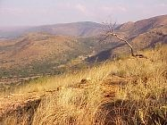 Kgaswane Mountain Reserve - Photo by Linx Africa